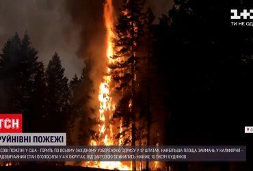 У США палають ліси одразу у 12 штатах