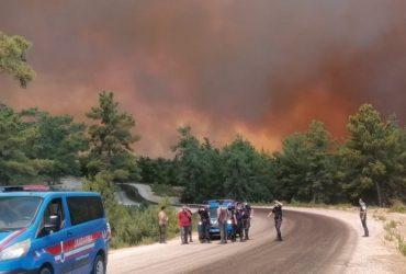 Любимые курорты украинцев в Турции охватил огонь (фото, видео)