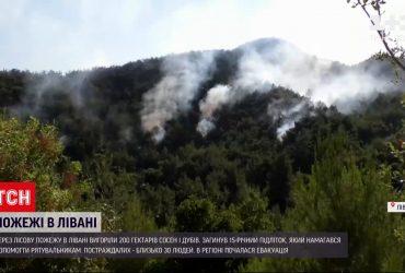 На севере Ливана горят леса