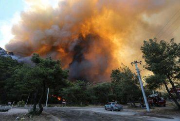 Президент Турции объявил районы лесных пожаров зонами бедствия (фото, видео)