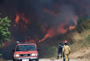 Спасатели не могут потушить лесные пожары в Греции: огонь вспыхивает повторно (фото, видео)