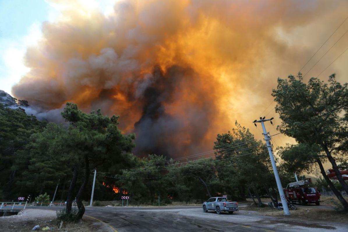 Пожар в Турции / фото REUTERS/Kenan Gurbuz
