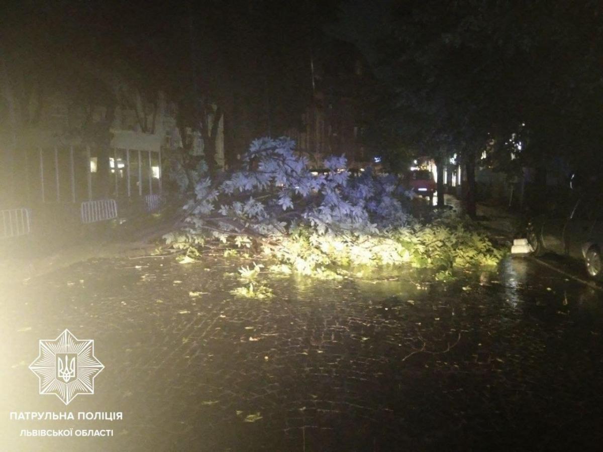 Негода в Україні наробила лиха / фото Патрульна поліція Львівщини