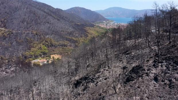 После пожаров / фото BirGün