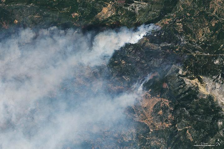 Forest fires engulf resort areas in Turkey / photo earthobservatory.nasa.gov