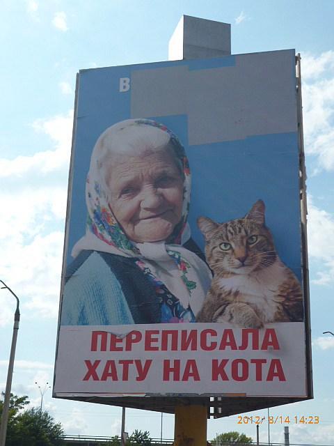 Билборд, после появления которого зародился украинский политический мем про бабушку и кота / i1.wp.com