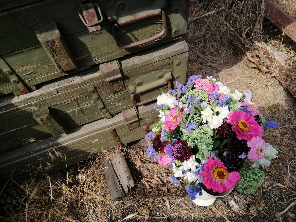 В Березовом несколько лет назад сестрыоткрыли цветочную ферму / фото УНИАН