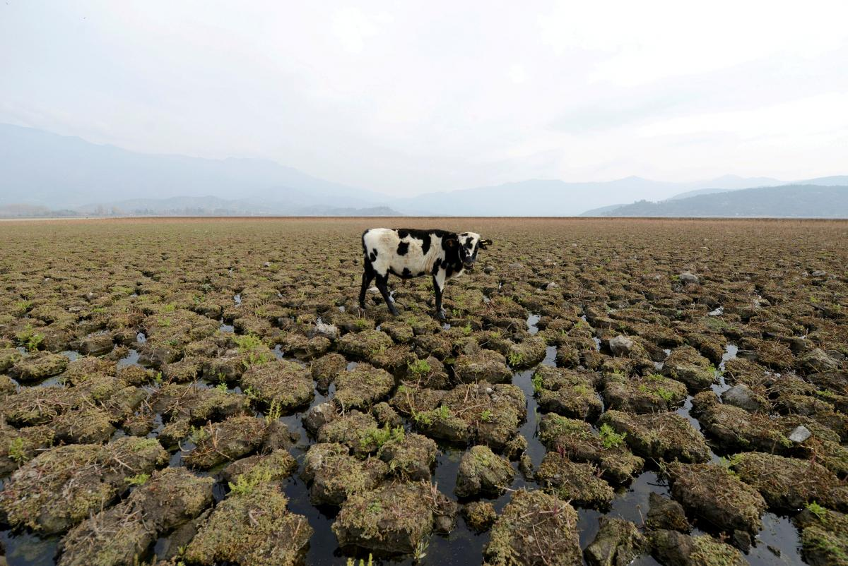 Постоянное повышение температуры может принестив Украинусухое лето /фото REUTERS