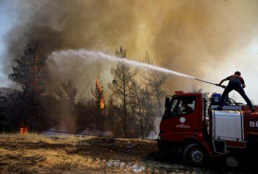 Пожары в Турции: власти открыли дело за просьбу о помощи в соцсетях