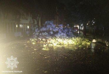 Ураган пронесся по Украине: двое погибших, более полутысячи населенных пунктов - без электричества (фото, видео)