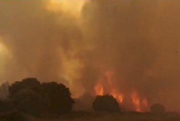 Из-за лесных пожаров в Италии задерживаются поезда, началась эвакуация (видео)