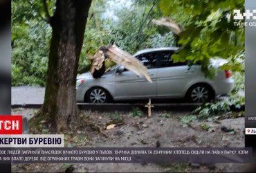 Во Львове поднялся сильный ветер - два человека погибли, повалены десятки деревьев