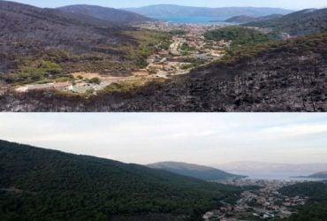 В сети показали Турцию до и после пожаров: осталось лишь пепелище (фото)