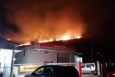В Хорватии бушуют масштабные лесные пожары, огонь приблизился к домам