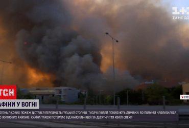 Из-за огня лесных пожаров тысячи людей вынуждены покидать дома к северу от Афин