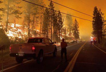 Не видно даже неба: в США бушуют масштабные лесные пожары (фото)