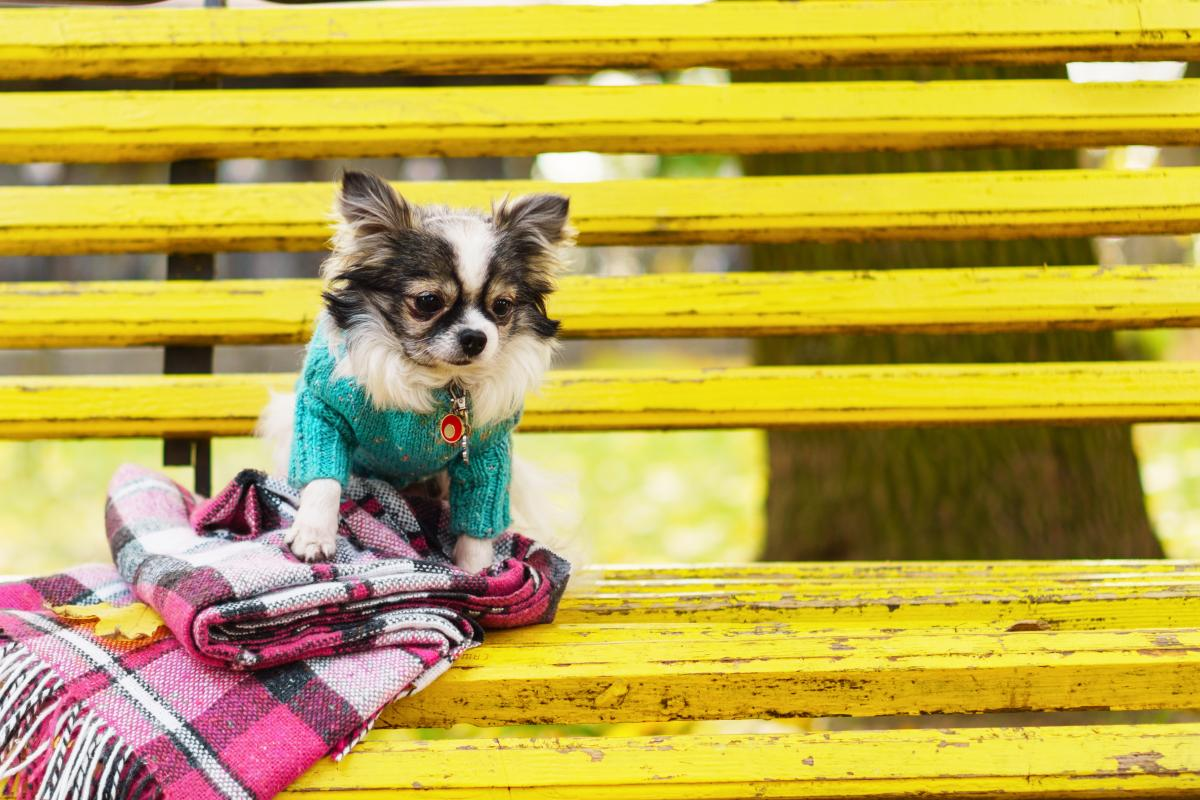 В Украине идет похолодание / фото ua.depositphotos.com