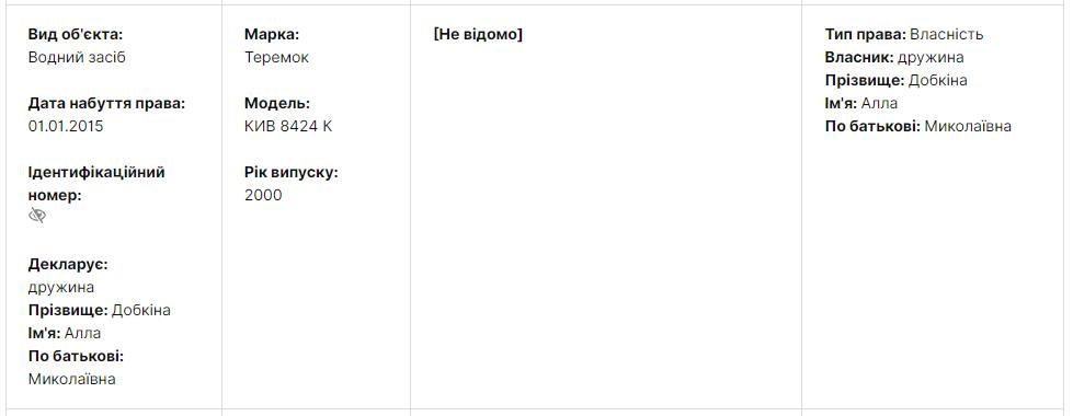 Скріншот із декларації Михайла Добкіна