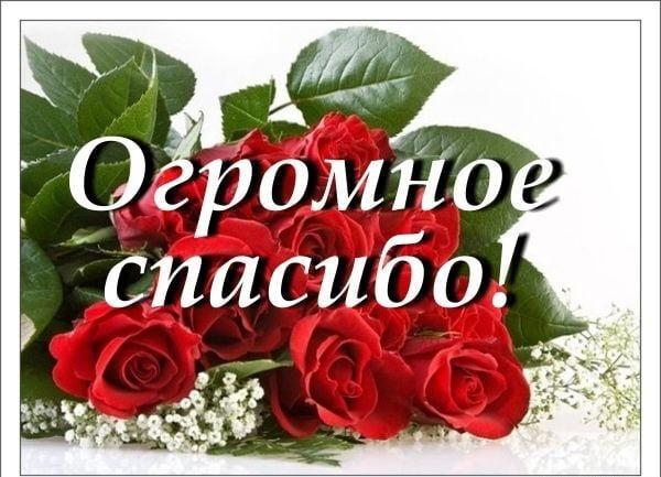 Спасибі картинки / фото klike.net