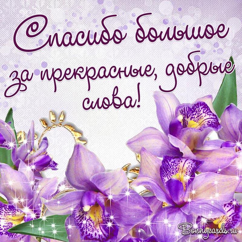 Картинки зі словом спасибі / фото bonnycards.ru