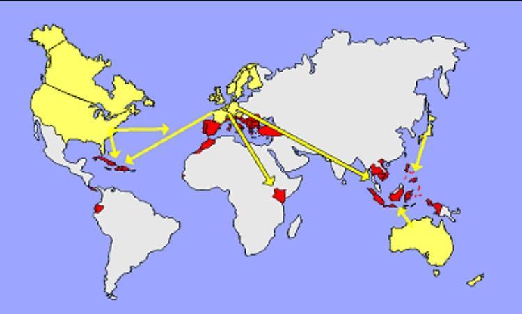 Карта секс-туризма в мире / фото maximonline