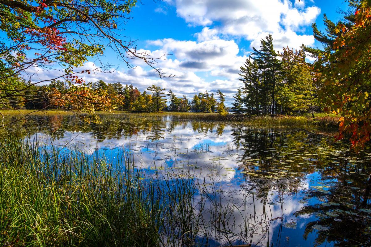 Приметы погоды 19 сентября / фото ua.depositphotos.com