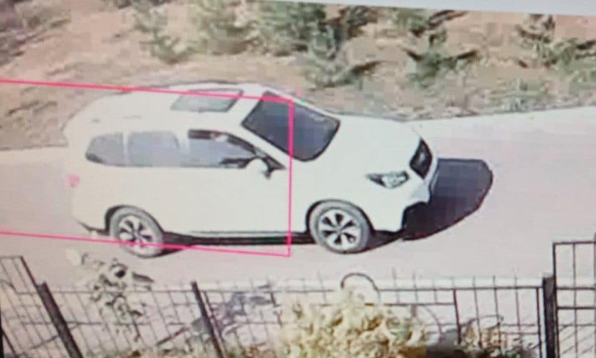 Правоохранители нашли авто угонщика в поле / фото: Нацполиция