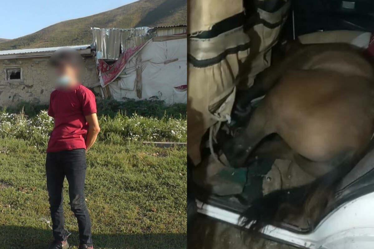 Скотокрад з Казахстану вмістив коня в легковик / фото polisia.kz