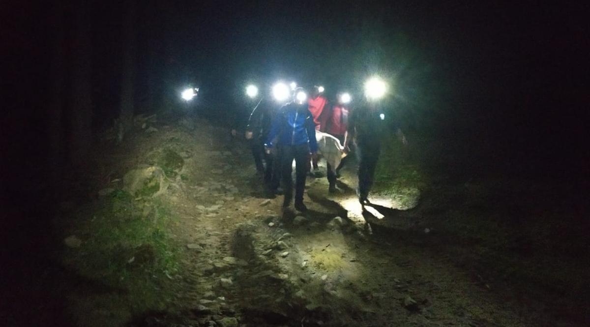 Спасатели всю ночь проводили эвакуацию туристов / фото ГСЧС
