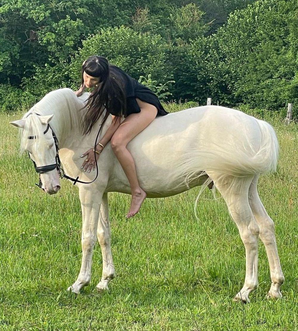 Белла Хадид снималась верхом на лошади / фото instagram.com/bellahadid