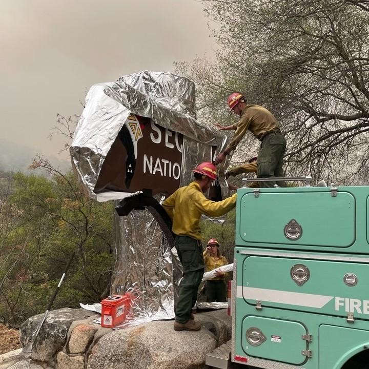 В США пожар угрожают парку секвой / фото instagram.com/sequoiakingsnps/