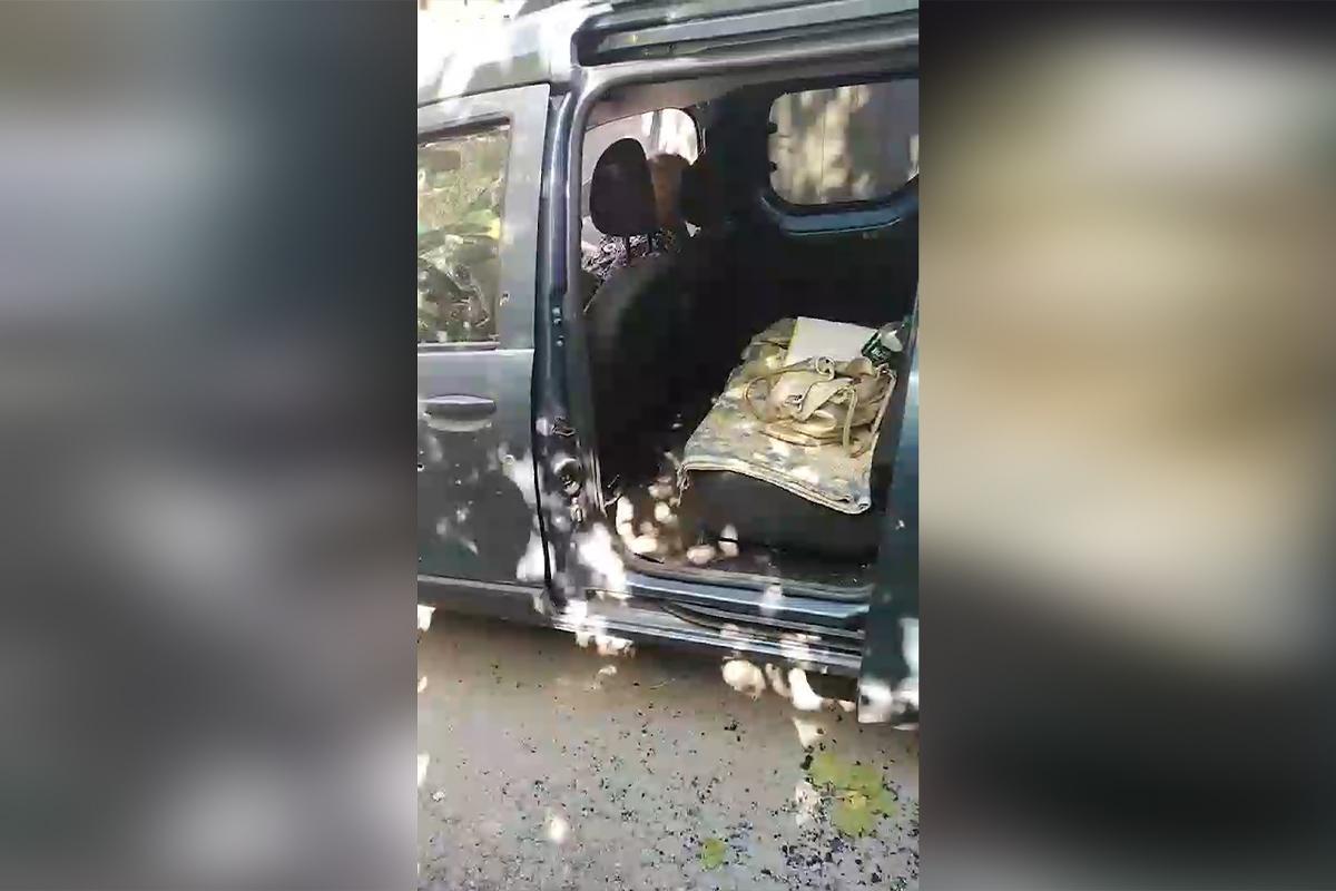 Під Дніпром вибухнула граната в машині / скріншот