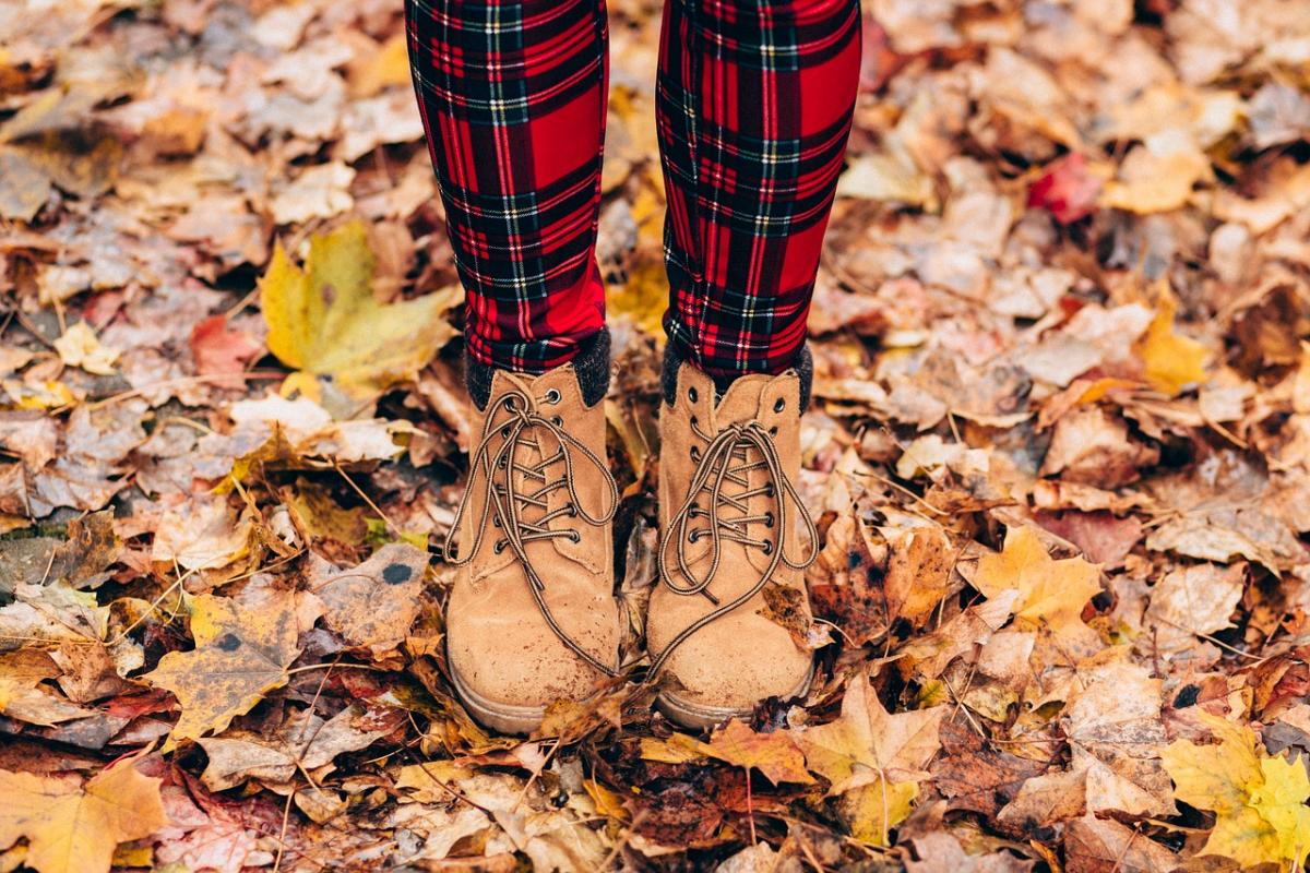 12 октября какой сегодня праздник / фото pixabay.com