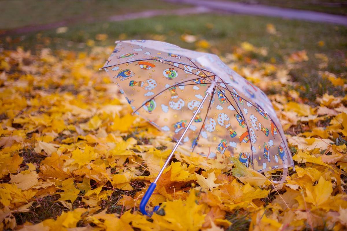 13 жовтня в Україні дощитиме / фото pixabay.com