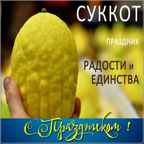 Суккот як відзначають / фото fresh-cards.ru