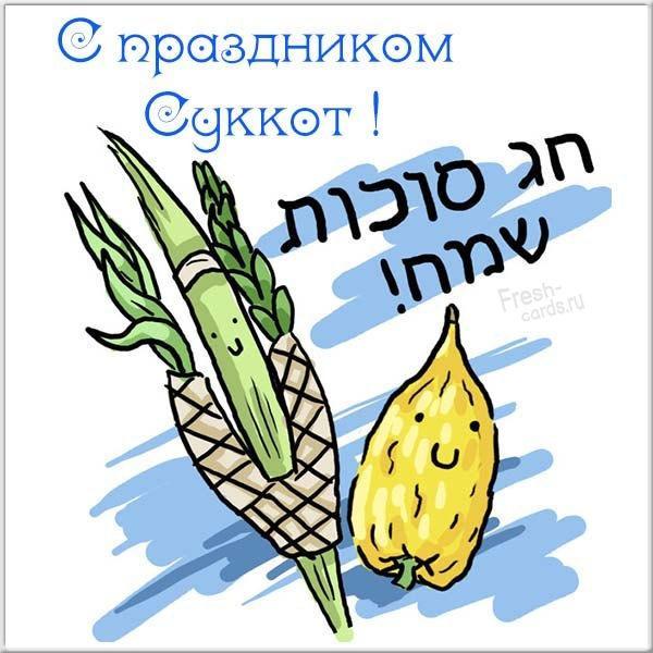 Суккот листівки / фото fresh-cards.ru