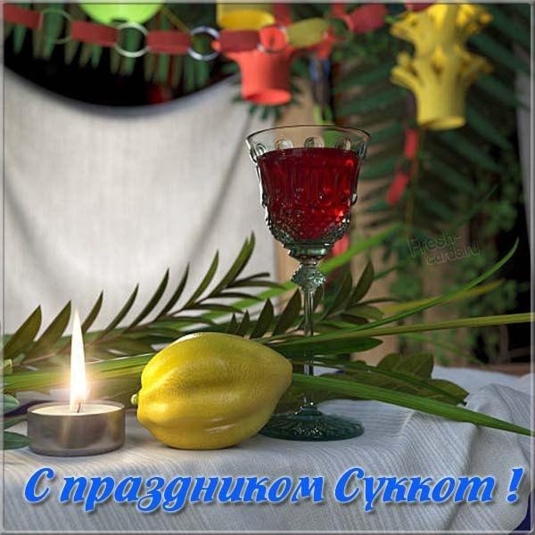 Суккот поздоровлення / фото fresh-cards.ru