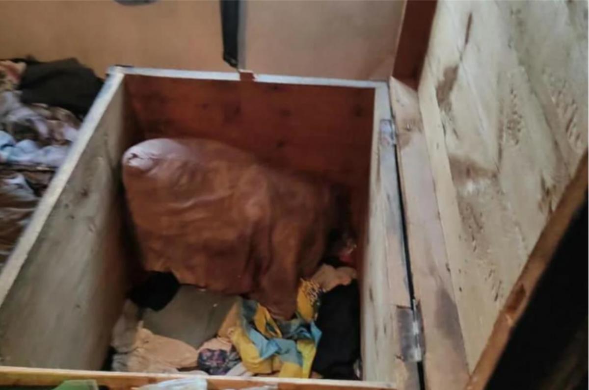 Детей нашли мертвыми в старом сундуке / фото facebook.com/Артем Кисько