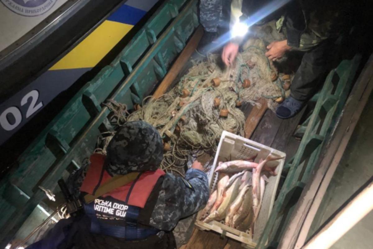 В Одесской области злоумышленники наловили краснокнижных осетровых на сотни тысяч гривен / фото od.npu.gov.ua