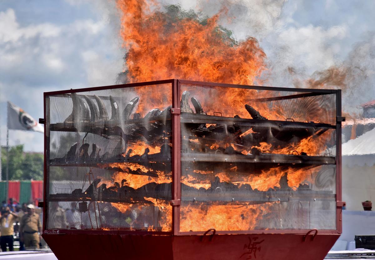 Рога решили сжечь, так как продавать их было бы так же неправильно, как продавать изъятые наркотики / фото REUTERS