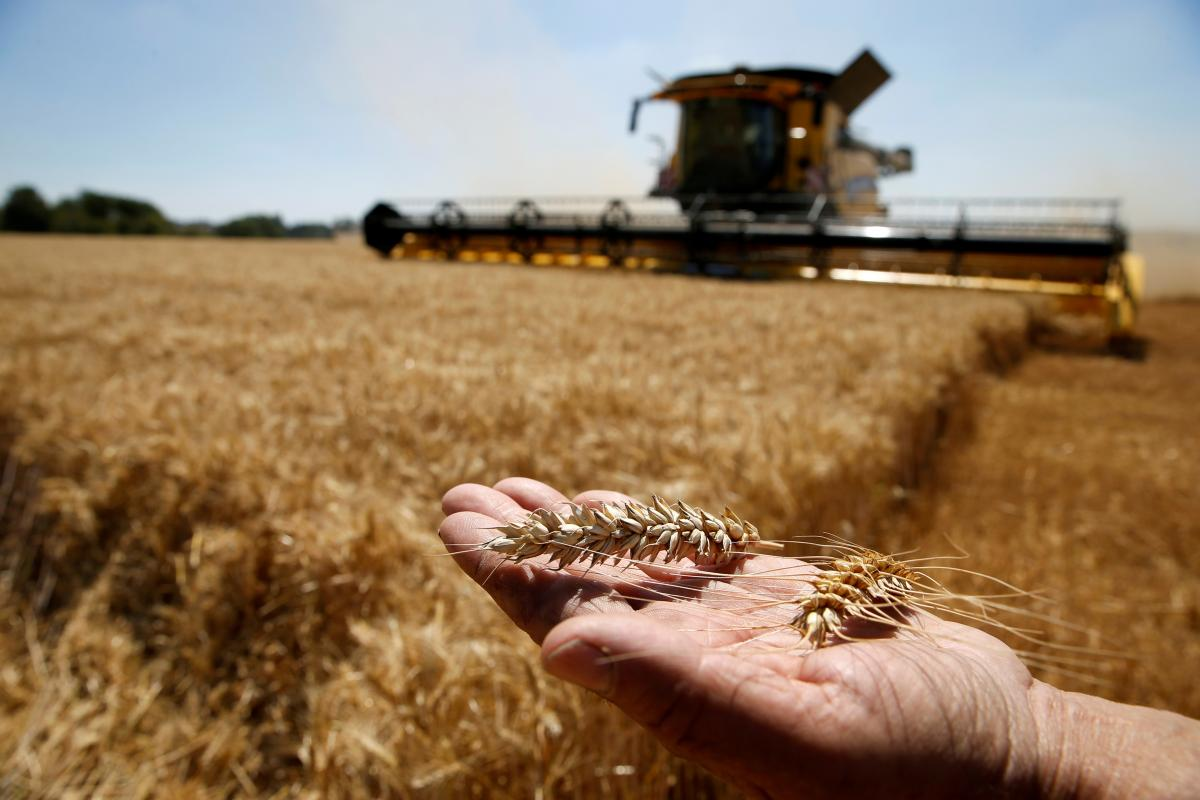 Європейський фермер захищений дотаціями / фото REUTERS