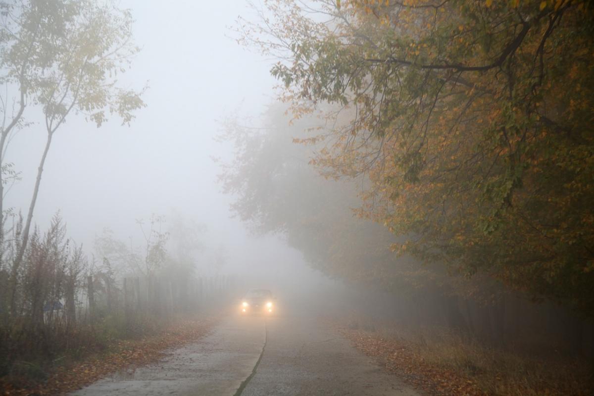 В Україні очікуються холодні ночі та ранкові тумани / фото pixabay.com