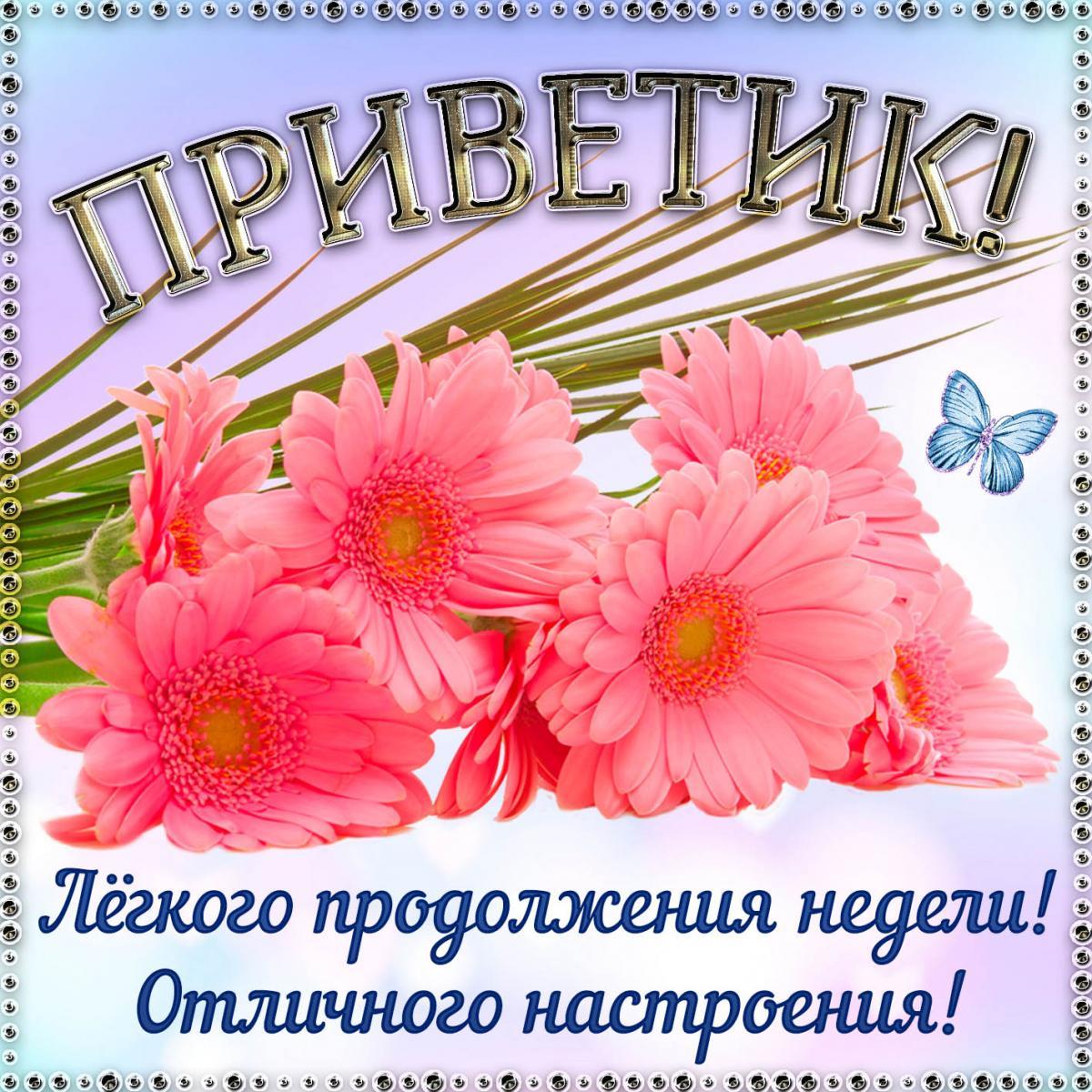 Прикольные картинки привет / фото fresh-cards.ru