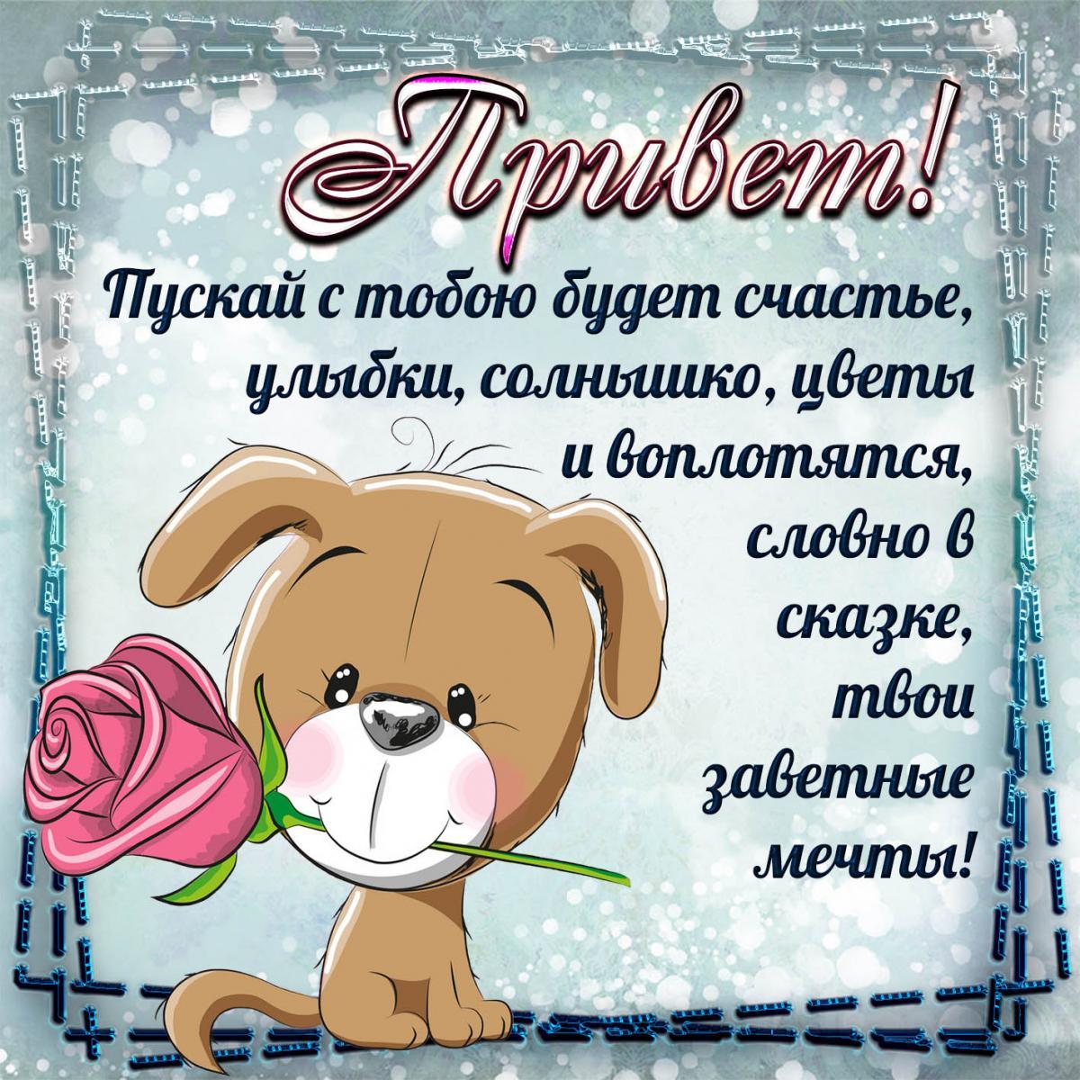 Прикольные картинки приветствия/ фото fresh-cards.ru