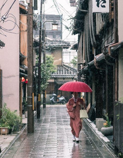 Модный зонтик 2021-2022 / pexels.com