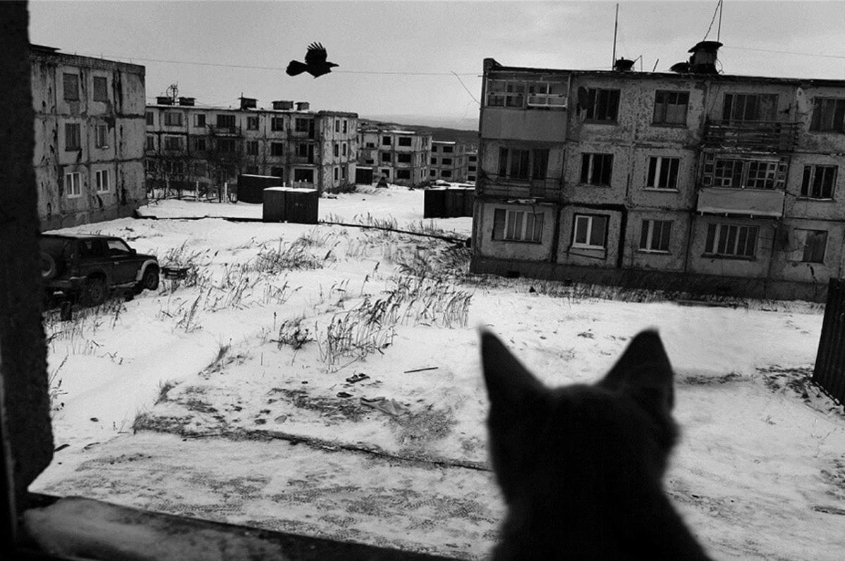 7% росіян готові їхати вСибірнавіть без жодних умов / фото ik-ptz.ru
