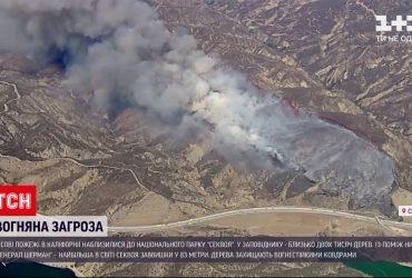 """Калифорнийские лесные пожары приблизились к национальному парку """"Секвойя"""""""