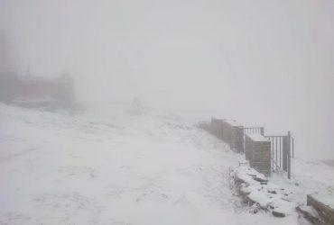 Карпати накрило штормовим вітром: людей просять не йти в гори (відео)