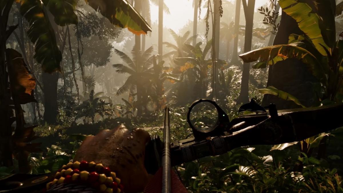 Возможно, Ubisoft создает мультиплеерную Far Cry / фото GamingBolt