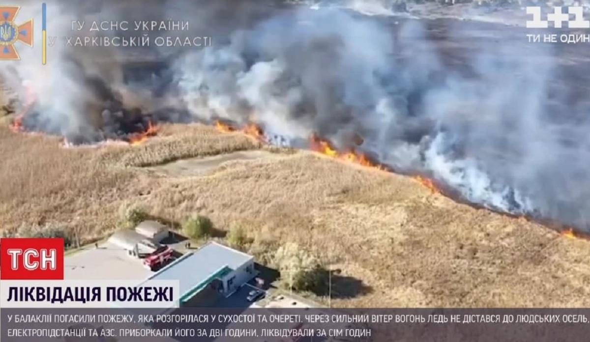 Рятувальникам було важко впоратися з пожежею / скриншот з відео